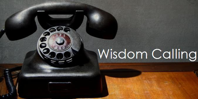 five components of wisdom